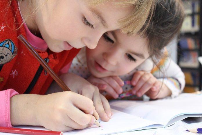 Montessori Private Education in Ontario
