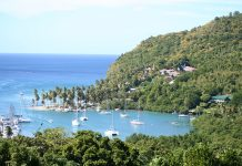 Requirements for Canadians with offshore property and income