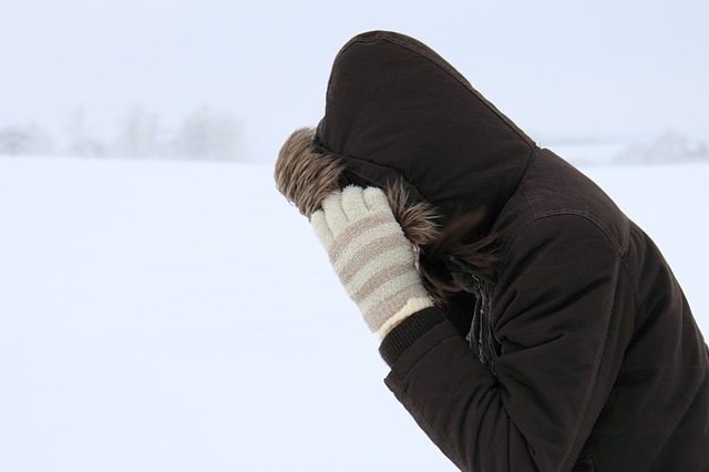 Canada's Wind Chill Index