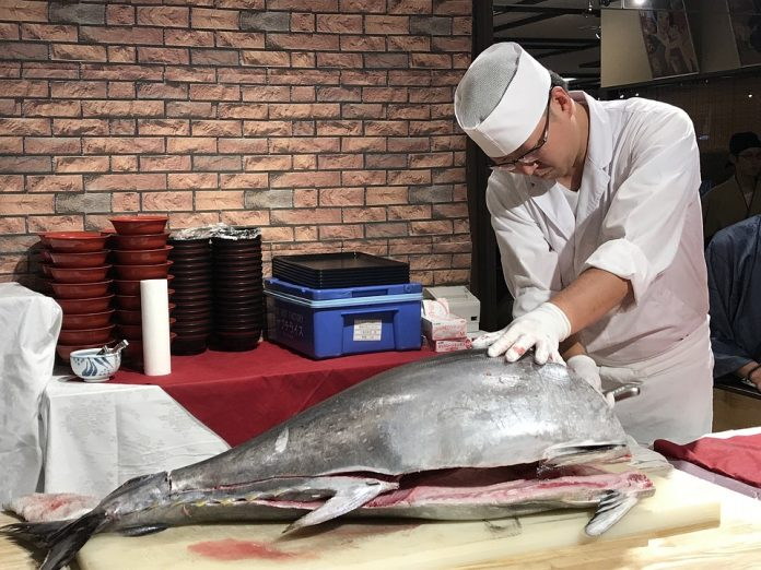 Mercury in Fish: Making Informed Choices about Fish