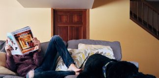 Can a landlord evict a tenant for having a pet?