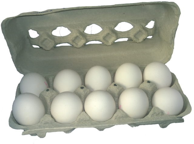 Major food chains committed to 100% cage-free eggs