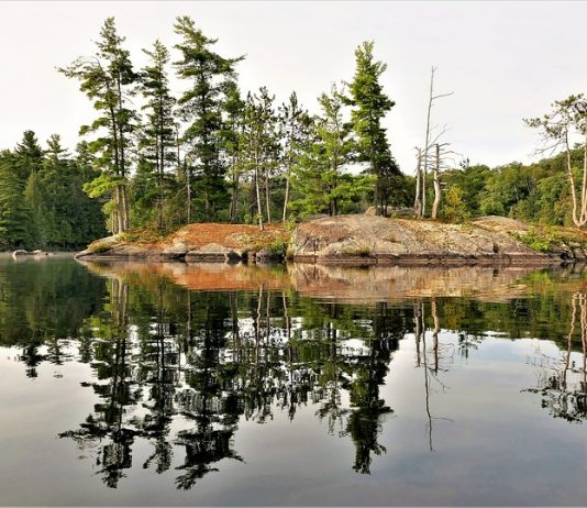 The History of Ontario's Parks
