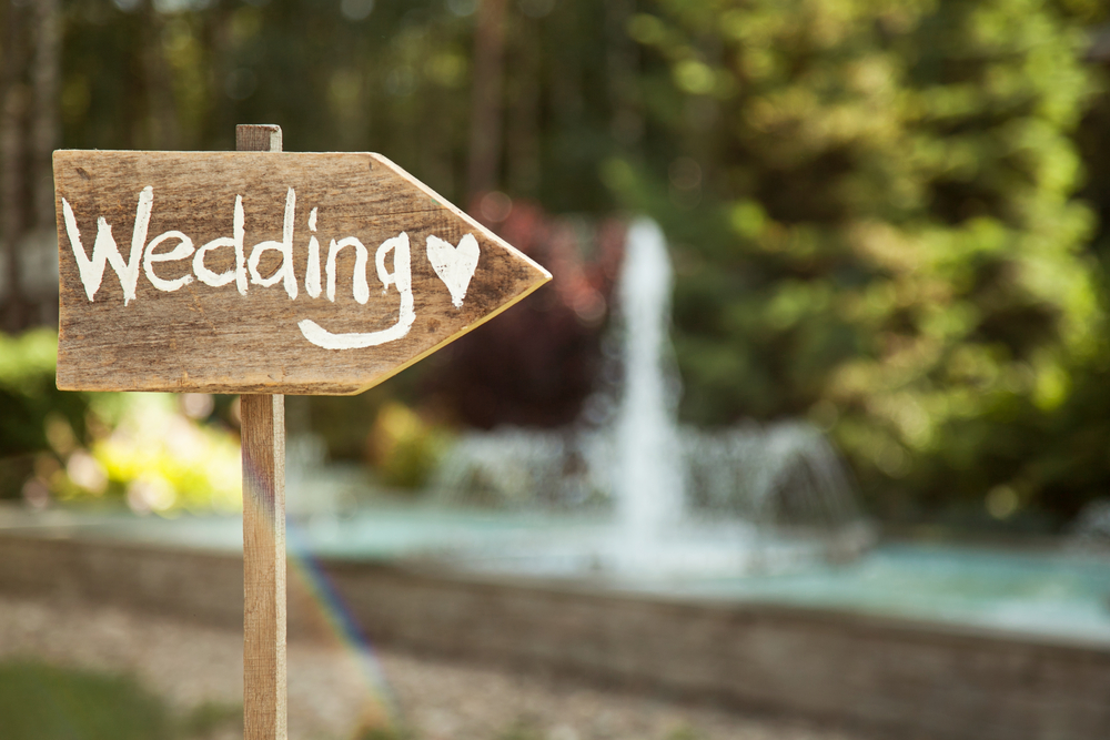 Wedding Plan Overview: What Every Bride Should Know