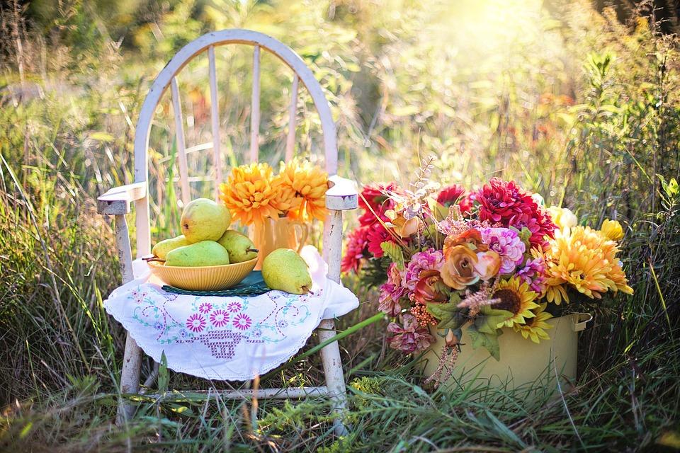 Enjoy Ontario Fruit Season