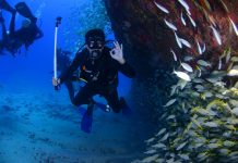 Scuba Diving Liveaboard Vacations