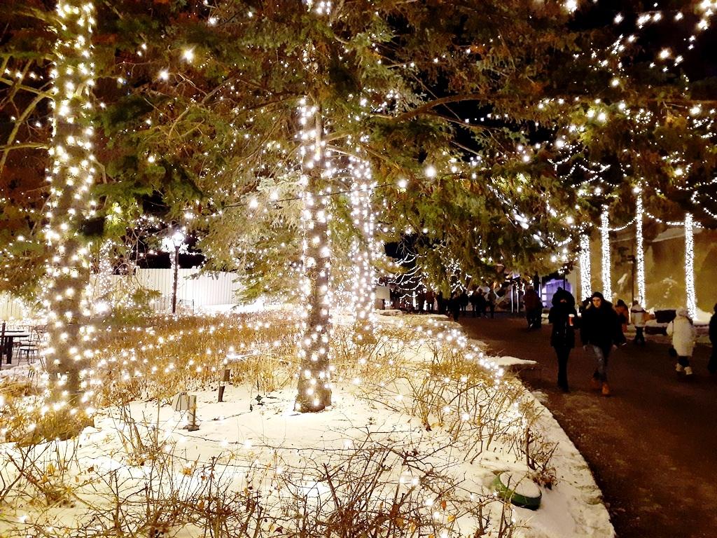 Magic of Canada's Wonderland Winter Festival of Lights 2019 AllOntario