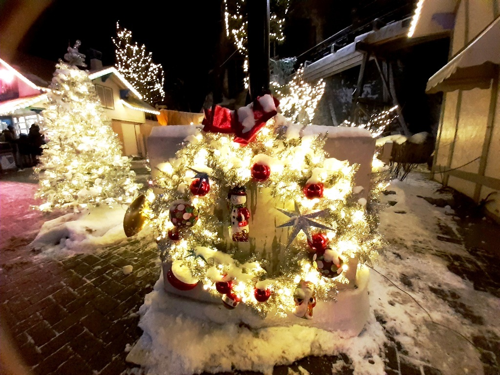 Magic of Canada's Wonderland Winter Festival of Lights 2019