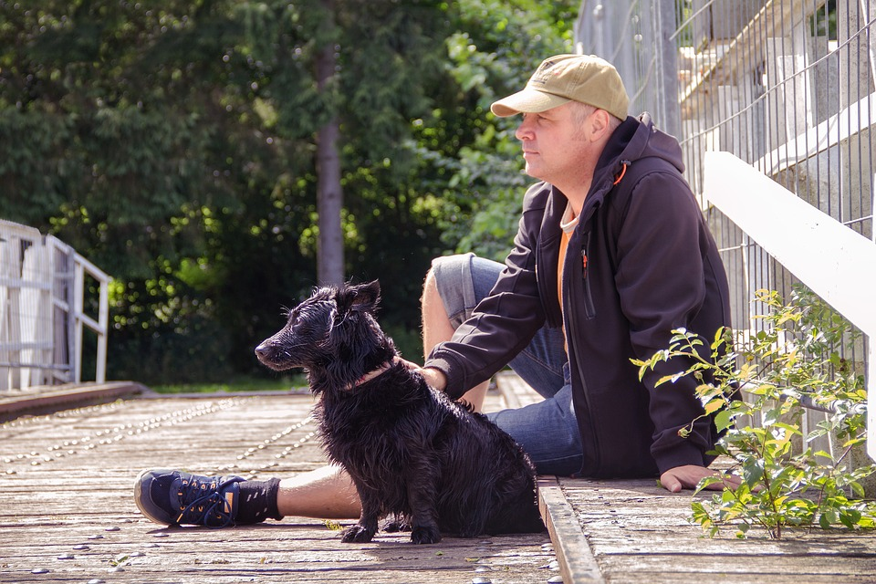 Hit the road Jack: take your dog for a long nature walk AllOntario