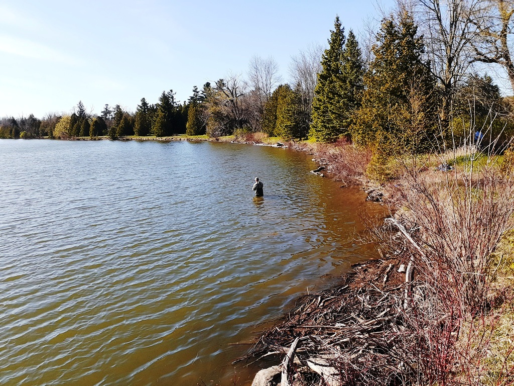 Earl Rowe Park – the First Day Out during Reopening Ontario AllOntario
