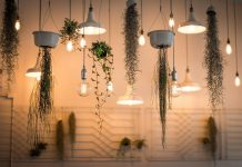 How to Choose the Best Grow Lights
