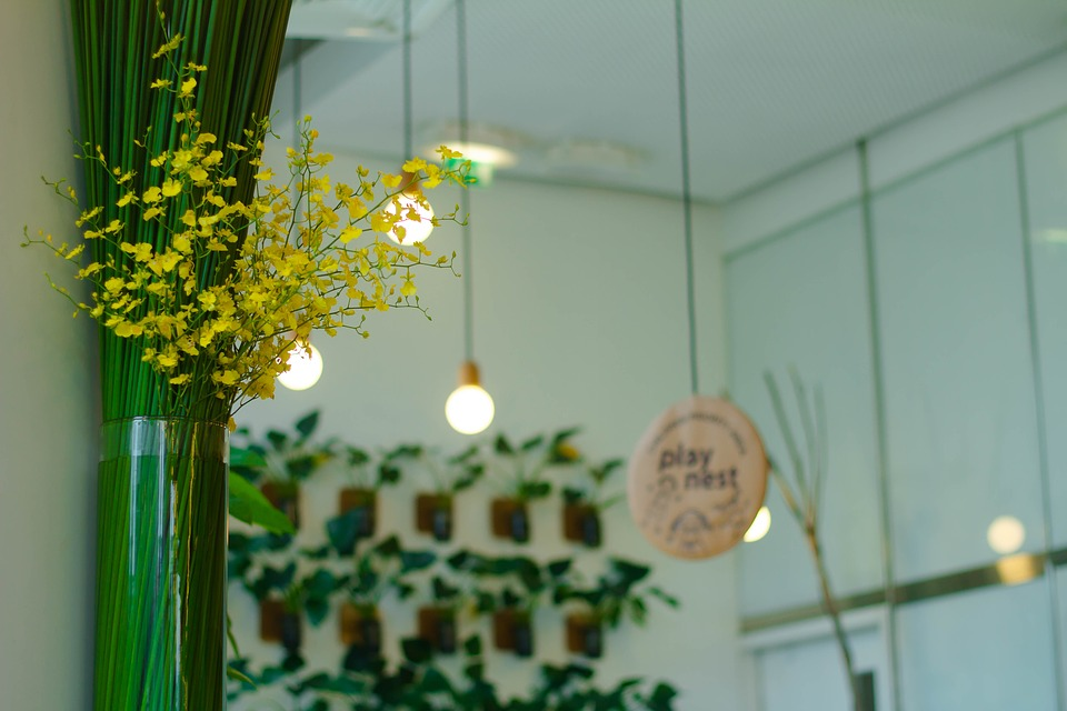 How to Choose the Best Grow Lights AllOntario