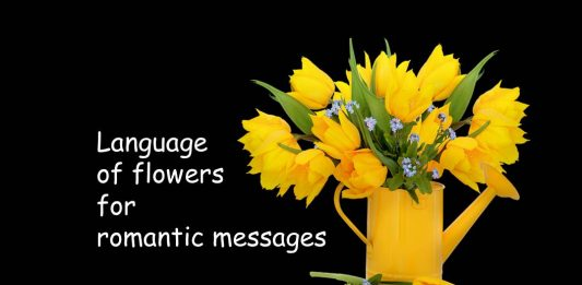 Symbolic language of flowers for romantic messages