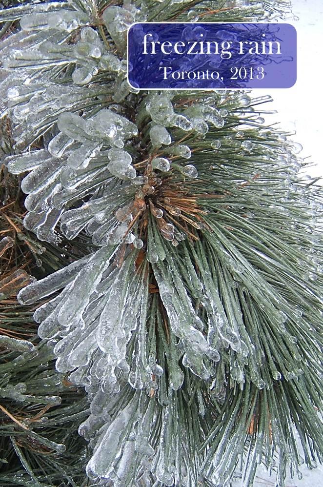 Winter in Ontario