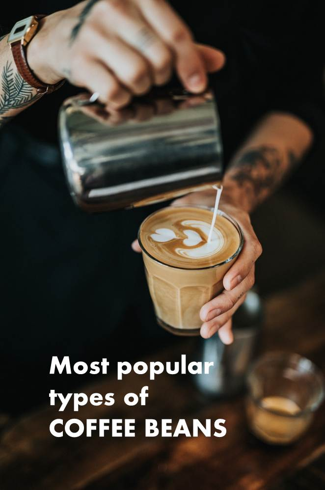 Most popular types of coffee beans