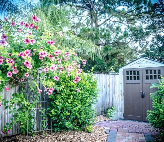 7 Best Sheds for Outdoor Storage